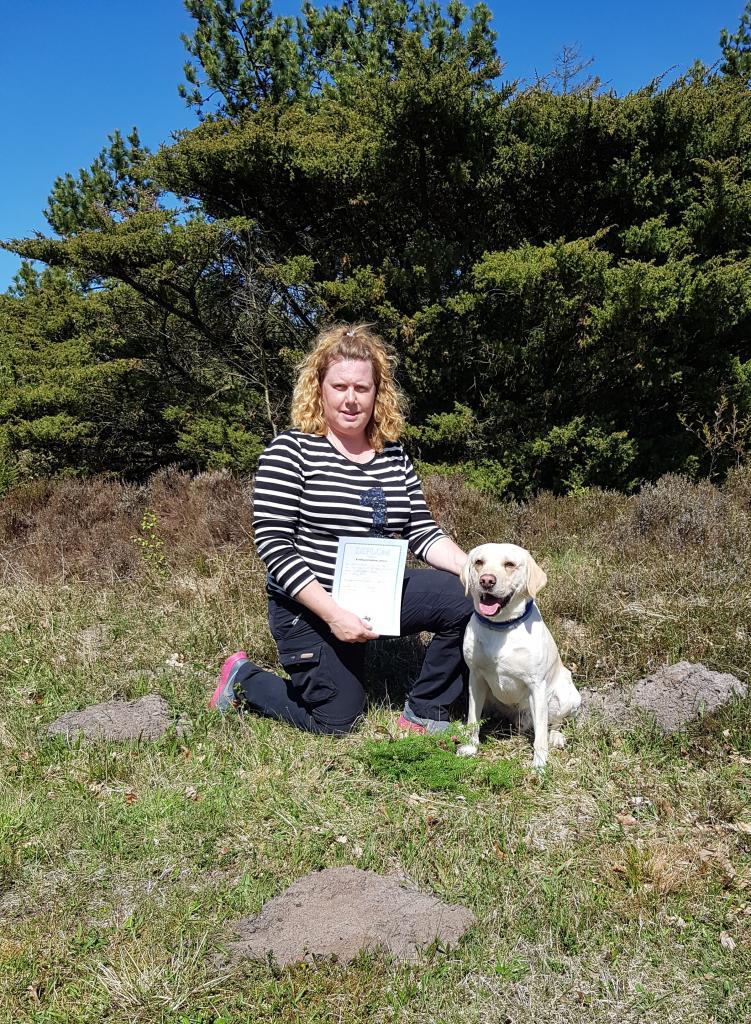 Heidi og SEVCH DKSCH Ravensbank Brandy (Bamse) får 1. pr. på  40 timer 1000 meter spor i maj 2018.©Heidi Kristiansen