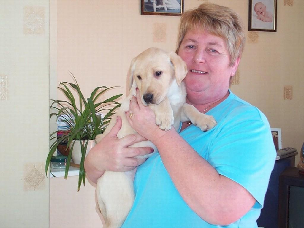 This is Mrs Angela Markham, co-owner of Kennel Tidemark with her husband, Mr Andy Markham. The puppy in Angela's arms is  Tidemark Ivy (Ivy). We took Tidemark Ivy (Ivy) home from England when she was nine weeks old.©Ravensbank Labrador Retrievers
