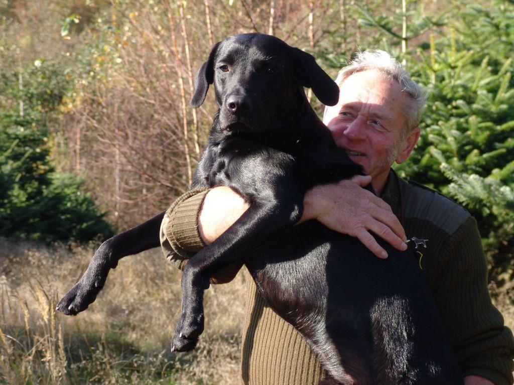 DKBRCH DKJCH NOJCH SEJCH NORDJCH 2EV2010 3UM2008 Ravensbank Swift (Swiffer) og Gert Müller tager en krammer i anledning af Swiffers første førstepræmie i Åben klasse på B-prøve. Det var d. 14-10-2007 på Bornholm. Swiffer er hvalp fra Ivy's 2006-kuld.©Ravensbank Labrador Retrievers