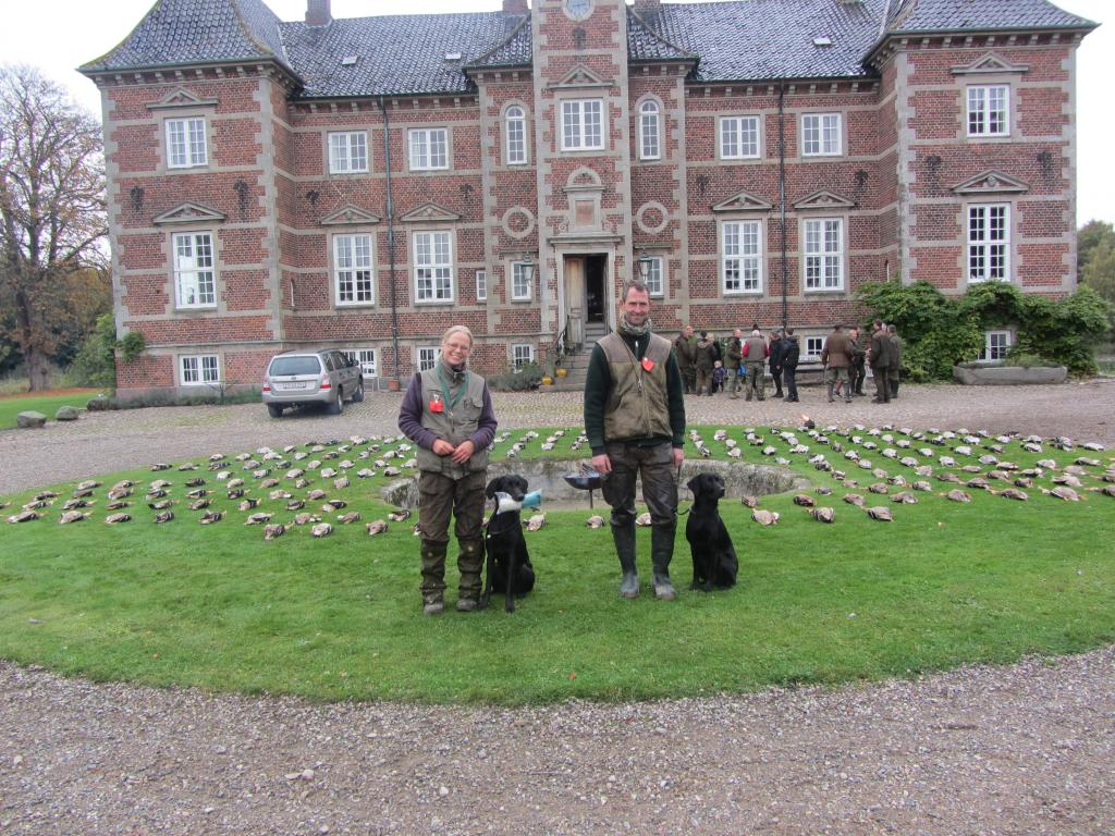 From the unofficial Field Trial in October 2013. To the left it is Miss Anne Iversen with Ravensbank Donna (Bibs) and to the right it is Mr. Kurt Thorsen with Ravensbank Janet (Janet). ©Ravensbank Labrador Retrievers