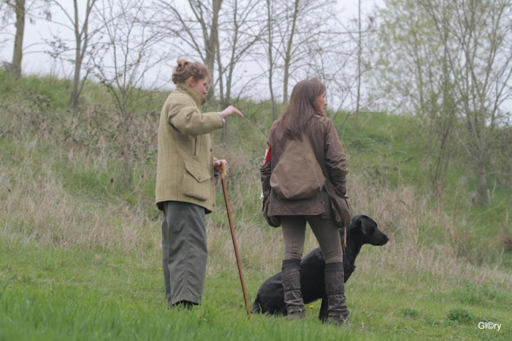 From the WTA Royal Canin 2012, at Mortagne-au-Perche on 31 March and 1 April 2012. The dog is FRFTCH Ravensbank Sir Lancelot (Lance) who is owned and handled by Miss. Anne Besnard. ©GLORY Frédérique