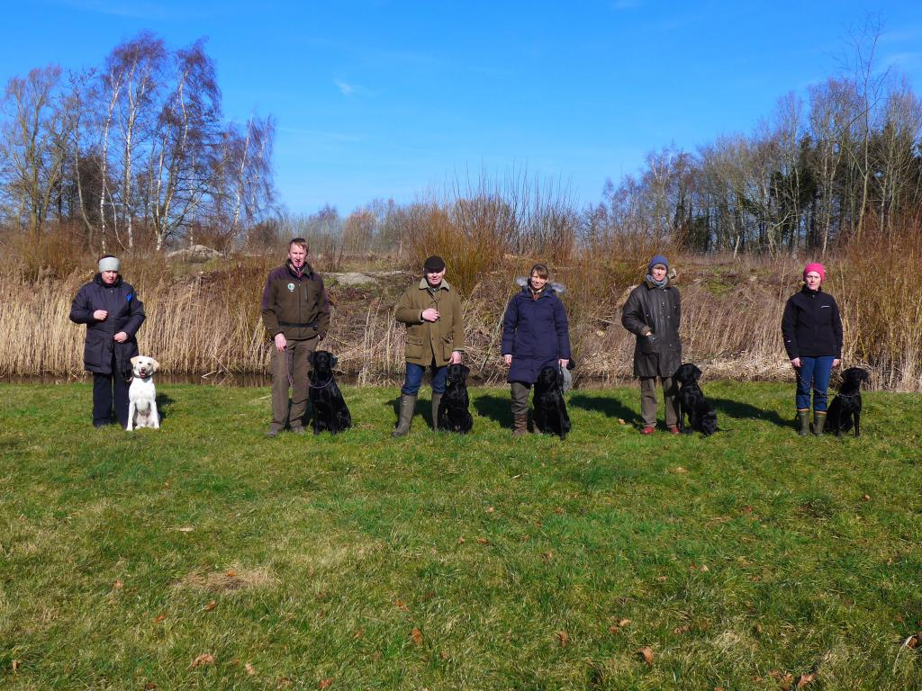 Picture from the one year birthday meeting with the cake-litter on 8 March 2015. From the left it is Heidi with SEVCH DKSCH DKSCH(V) Ravensbank Brandy (Bamse), John with Ravensbank Dundee (Dundee), Søren with Ravensbank Biscuit (Bibi), Rikke with Ravensbank Angel (Nellie), Lisbeth with Ravensbank Jaffa (Molly) og rightmost it is Jane with Ravensbank Trifle (Trifle). ©Ravensbank Labrador Retrievers