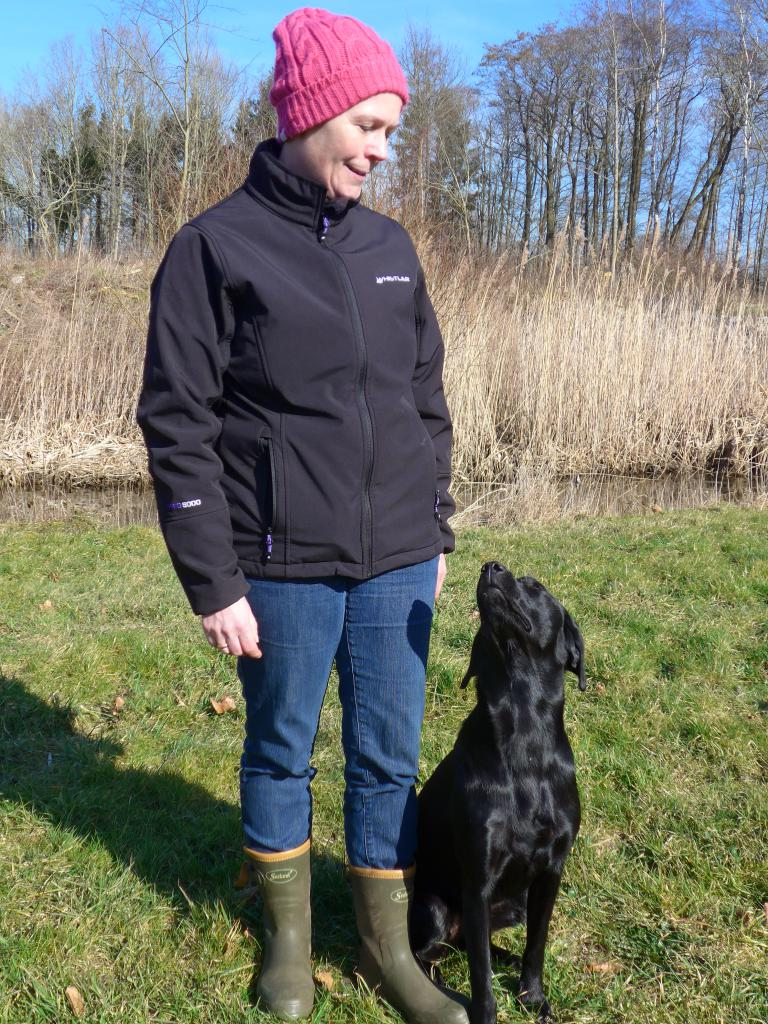 Jane and Ravensbank Trifle (Trifle) One year Birthday. ©Ravensbank Labrador Retrievers