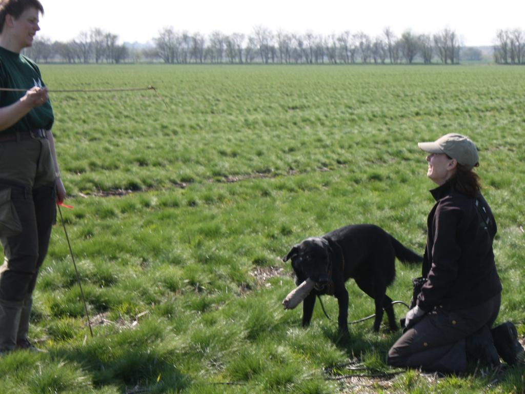 """Gitte and Ravensbank Raven (Raven) attending a tracker course. The """"game"""" has been found and Gitte is down on eye level with her dog praising him for a job well done.©Gitte Nini Erichsen"""