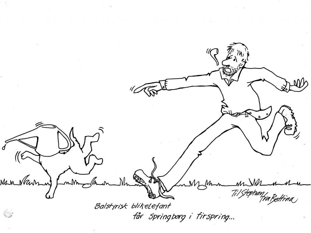 Balstyrisk blikelefant får Springborg i firspring... Sjov historie fra Stephan Springborg: Ravensbank Sgt. Pepper (Pepper) var blevet tørstig ude i haven, men han fandt så heldigvis vandkanden. Ned med hovedet og slubre slubre. Men da hovedet skulle op så ... Det blev altså ret hysterisk. Pludselig kommer en fuldstændig sindsyg blikelefant farende rundt i haven skrigende og hylende.  Det tog faktisk lidt tid før han fik rystet kanden af, og jeg forsøgte jo at fange hystaden og for rundt efter elefanten. Jeg håber sgu ikke, at naboerne så noget.©Bettina Brønnum-Reimer