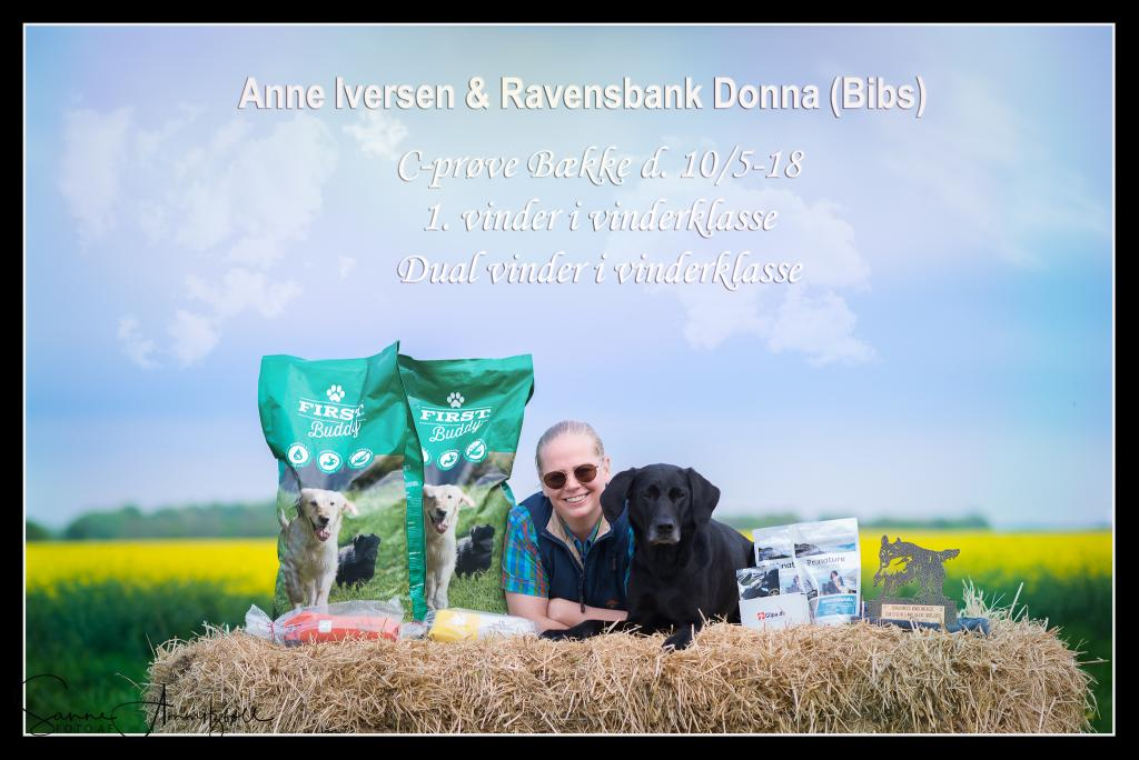 Ravensbank Donna (Bibs) with Ms. Anne Kjær Iversen became 1st winner and winner of the dual purpose trophy at the unofficial cold game test / show on 10 May 2018. ©Sanne Amnitzbøll